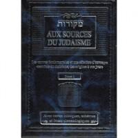 Aux sources du judaïsme - Tome 1