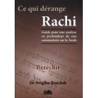 Ce qui dérange Rachi - Berechit - Dr Avigdor Bonchek