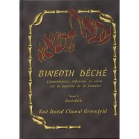 Bineoth Déché Tome 1 Béréchith