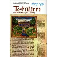 Sefer Tehilim - Les Psaumes I - Rabbin Avrohom Chaim Feuer