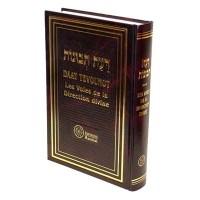Daat Tevounot - Les Voies de la Direction Divine - Ramhal